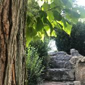 Jardin Anglais Vesoul